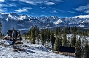Фотографии Горы Зима Леса Дома Пейзаж Словакия Снег Tatra mountains