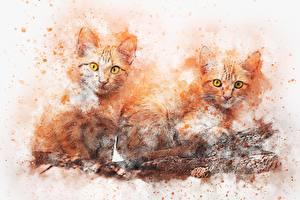 Картинки Рисованные Кошки Рыжая Двое Взгляд животное