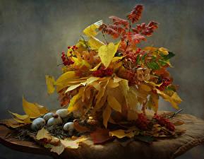 Обои для рабочего стола Натюрморт Осень Грибы природа Рябина Листья Природа