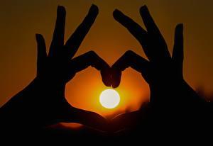 Фотография Рассветы и закаты Пальцы Вблизи Руки Солнце Силуэт
