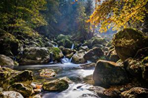 Фотография Швейцария Осенние Водопады Камень Мох Areuse Schlucht