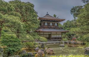 Фото Храмы Япония Киото Пруд Пагоды Деревья HDR Природа