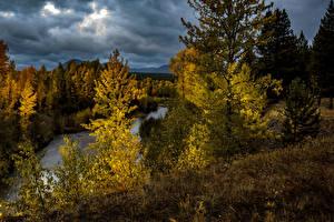 Фото США Осенние Парки Леса Реки Вечер Деревья Glacier National Park Montana Природа