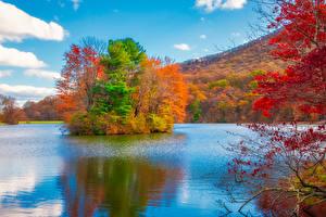 Обои Штаты Осенние Парки Речка Остров Деревья Blue Ridge Parkway Virginia