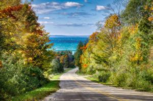 Фотография Америка Осень Дороги Мичиган Деревьев Leelanau Природа