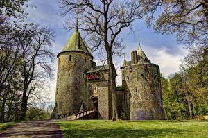 Картинки Великобритания Замки Деревья Castell Coch Города