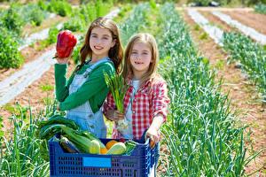 Фото Овощи Двое Девочки Взгляд Ребёнок