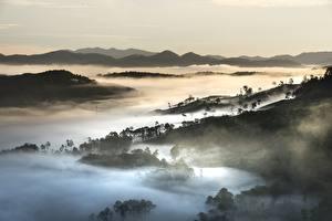 Обои Вьетнам Горы Леса Пейзаж Туман Da Lat,Lubang plateau Природа картинки