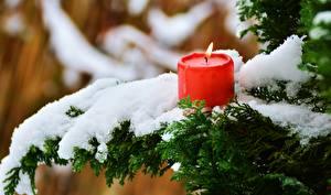 Картинки Зима Свечи Пламя Снеге Ветвь
