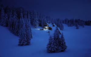 Фотографии Зимние Леса Здания Снег Ночные Ель Природа