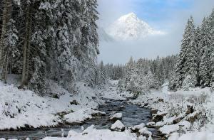 Фотографии Зима Леса Снег Ручей