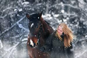 Картинки Зима Лошадь Снегу Две Блондинка животное Девушки