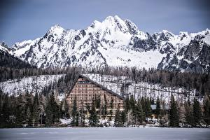 Фотография Зимние Горы Леса Словакия Гостиница Tatra mountains Природа