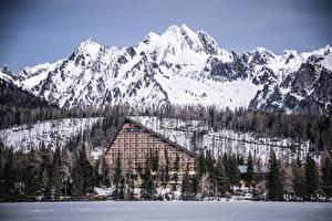 Фотография Зимние Горы Леса Словакия Отеля Tatra mountains Природа