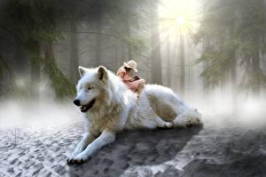 Обои Волки Леса Сидящие Шляпа Лучи света Фантастика
