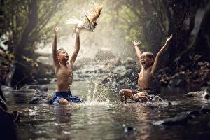 Фотографии Азиаты Птицы Мальчики Сидящие 2 Брызги Ребёнок