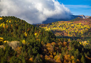 Фотография Осенние Леса Горы Природа