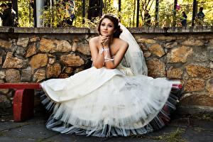Фото Скамья Невеста Платья Сидит молодые женщины