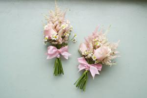 Фотографии Букеты Розы Ромашки Серый фон Двое Бантик Цветы