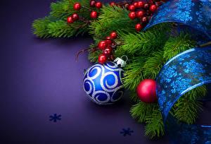 Картинка Рождество Ягоды Ветвь Ленточка Шар