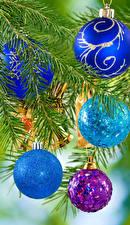 Картинка Рождество Ветвь Шар
