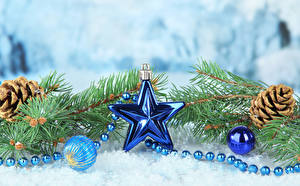 Фотография Рождество Ветвь Шишки Звездочки Шар