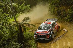 Картинки Ситроен Стайлинг Металлик Гонки 2017-18 C3 WRC Автомобили