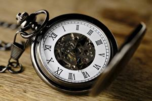 Картинки Часы Циферблат Карманные часы Вблизи