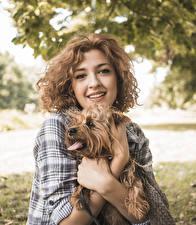 Картинка Собака Шатенка Смотрят Руки Йоркширский терьер молодая женщина Животные