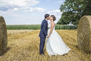 Картинки Поля Влюбленные пары Мужчины Солома Брак Две Жених Невесты Поцелуй Девушки