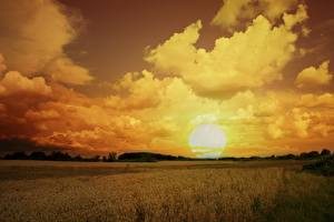 Фото Поля Небо Рассветы и закаты Облака Солнце Природа