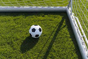 Картинки Футбол Газон Мяч Спорт