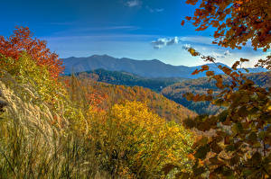 Фото Италия Лигурия Осенние Горы Леса Realdo Природа