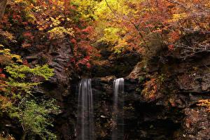 Картинка Япония Осенние Водопады Скала Meotodaki Falls in Gujo Природа