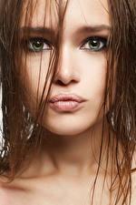 Обои Губы Шатенка Лицо Смотрит Волосы Девушки