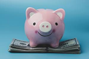 Фотографии Деньги Банкноты Цветной фон