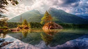 Фотография Горы Леса Пейзаж Скала