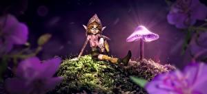 Фотографии Грибы природа Эльфы В ночи Очков Сидя Фэнтези 3D_Графика