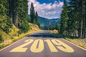 Фотографии Дороги 2019 Деревья