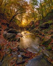 Обои Россия Крым Осень Камни Деревья Листья Лучи света Ручей Природа