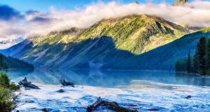 Фотографии Россия Горы Озеро Леса Altai Kucheklinskoe lake Природа
