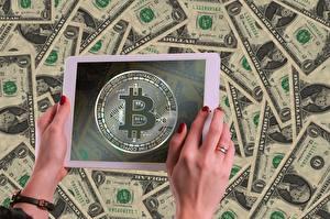 Картинка Планшет Биткоин Доллары Банкноты Деньги Руки
