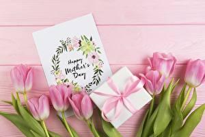 Фото Тюльпаны Праздники Розовый Подарки Цветы