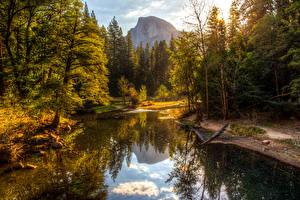 Картинки США Парки Осенние Горы Леса Озеро Йосемити Деревья