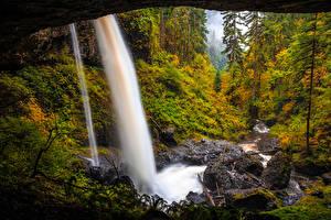 Фотография Штаты Парки Леса Водопады Осенние Камень Silver Falls State Park Oregon Природа
