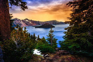 Картинки Штаты Парки Горы Озеро Ель Crater Lake National Park Oregon