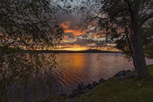 Картинки США Реки Рассвет и закат Камень Деревья Ветвь Meredith Bay Природа