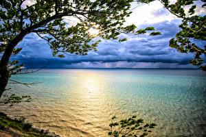 Фото США Рассветы и закаты Ветки Lake Michigan Природа