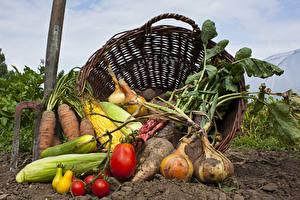 Фото Овощи Лук репчатый Кукуруза Помидоры Морковь Корзинка Земля Продукты питания