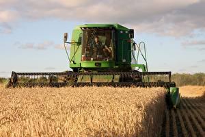 Фотографии Пшеница Поля Сельскохозяйственная техника Зерноуборочный комбайн
